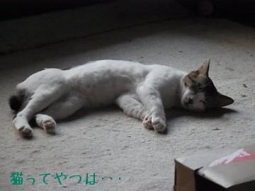 20100602_ryou.jpg