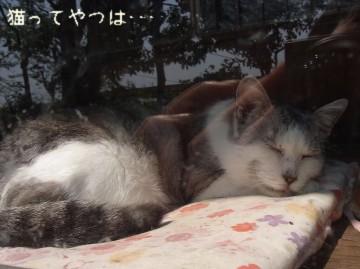 20100501_paku.jpg