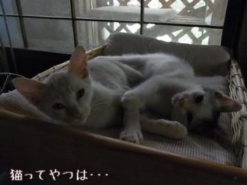 20110912_takeruhiro1.jpg