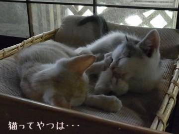 20110912_takeruhiro3.jpg