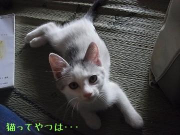 20110917_hiro.jpg