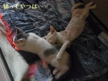 20110924_takeruhiro1.jpg