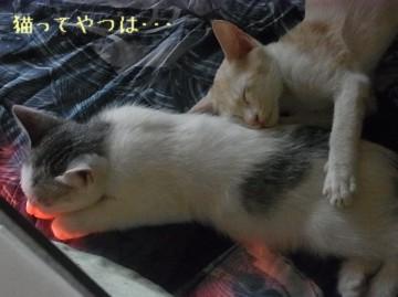 20110924_takeruhiro2.jpg