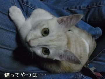 20111019_takeru.jpg