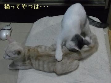 20111023_takeruhiro2.jpg