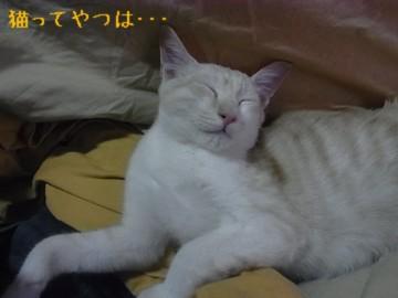 20111029_takeru1.jpg