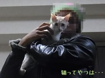20111117_takeru.jpg