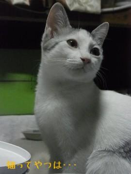 20111123_hiro1.jpg