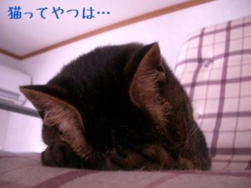 20050717_kento.jpg