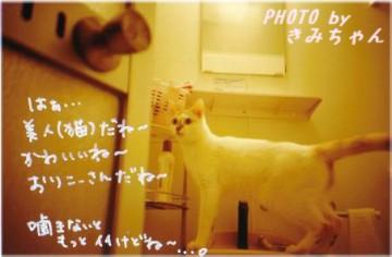 ryumi_3.JPG